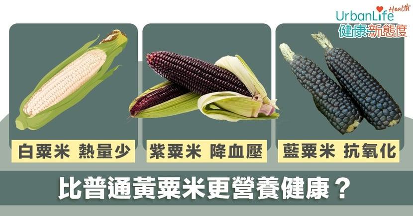 【粟米好處】白粟米熱量最少 紫粟米可抗癌降血壓 藍粟米可抗氧化(附4個食譜)