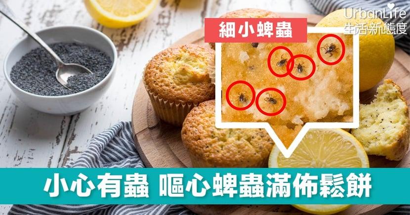 【病從口入】5月蜱蟲高峰期 一不小心美味鬆餅變成噁心蜱蟲的甜點