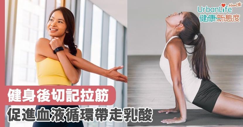 【拉筋好處】健身後切記拉筋 促進血液循環帶走乳酸