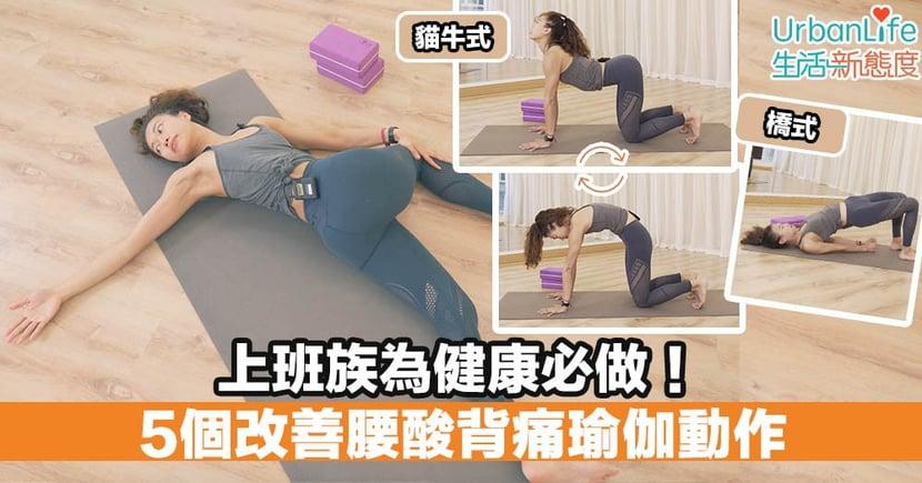 【運動專線】上班族必做 5個改善腰酸背痛瑜伽動作