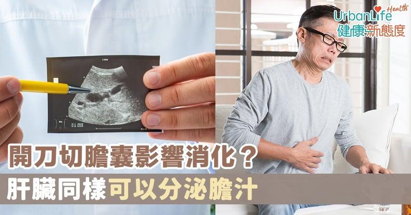 【膽結石症狀】開刀切膽囊影響消化?肝臟同樣可以分泌膽汁