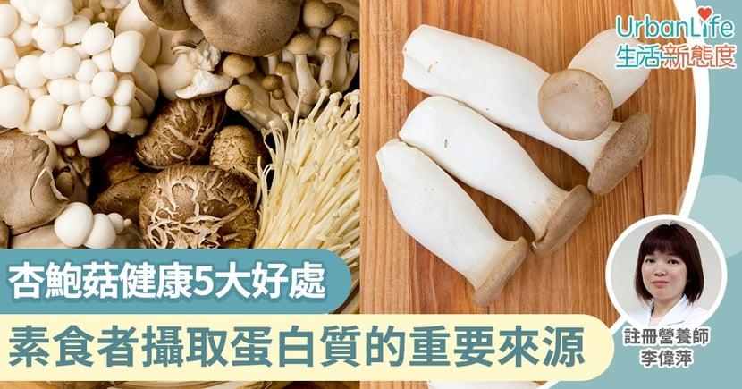 【菇類營養】素食者攝取蛋白質的重要來源!杏鮑菇健康5大好處