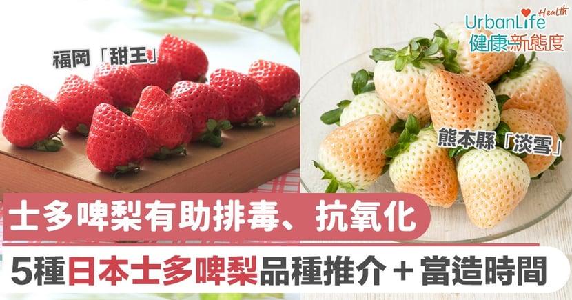 【日本水果】士多啤梨有助明目、排毒、抗氧化 5種日本士多啤梨品種推介
