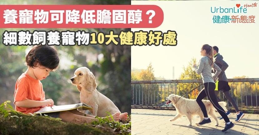 【養寵物益處】養寵物竟可降低膽固醇?一文細數飼養寵物10大健康好處