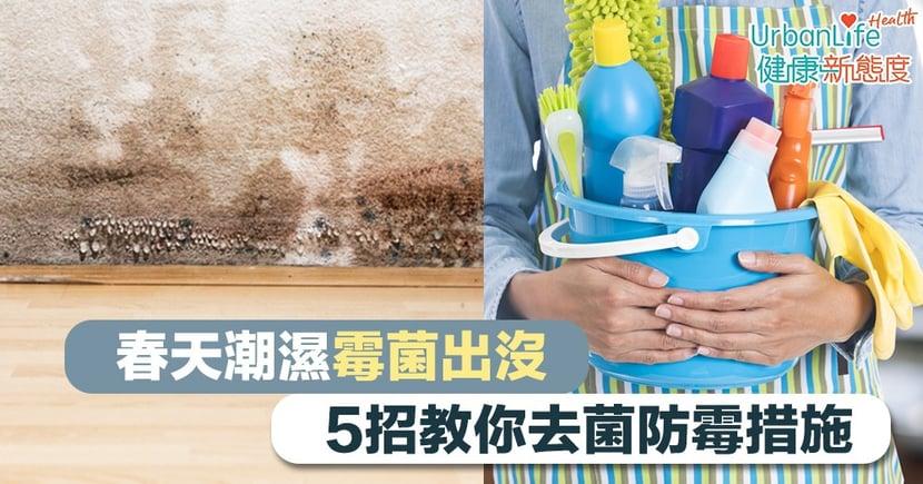 【家居防潮】春天潮濕霉菌出沒 5招教你去菌防霉措施