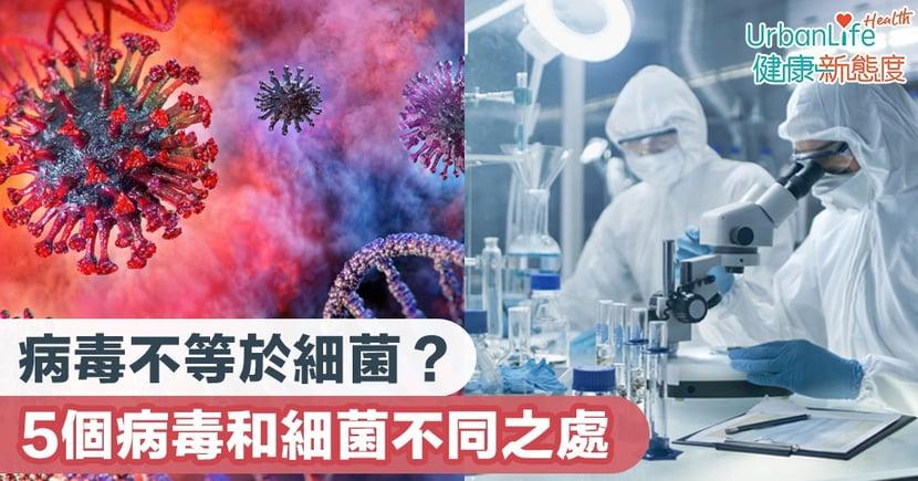 【武漢肺炎】病毒不等於細菌?5個病毒和細菌不同之處
