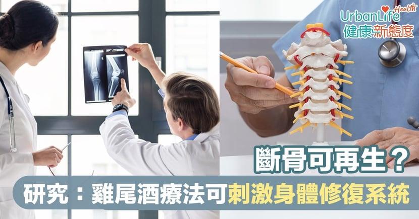 【自我修復】斷骨可再生?英國研究:雞尾酒療法可刺激身體修復系統