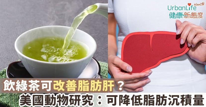 【脂肪肝飲食】飲綠茶可改善脂肪肝?美國動物研究:可降低脂肪沉積量