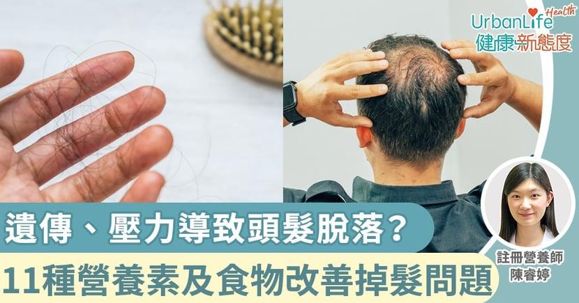 【脫髮原因】遺傳、壓力、飲食習慣導致頭髮脫落?11種營養素及食物有助改善掉髮問題