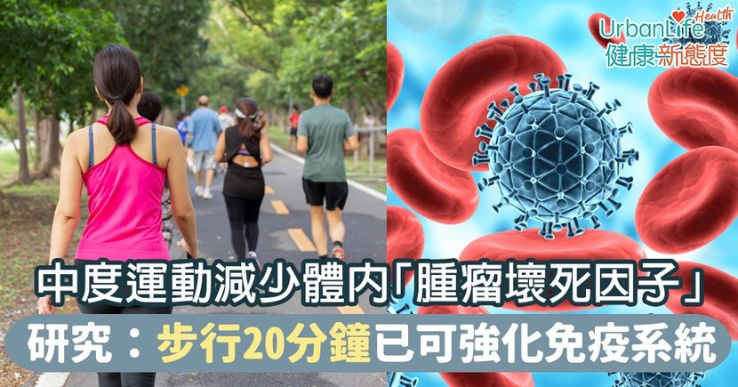 【增強免疫力】中度運動減少體內「腫瘤壞死因子」  研究:步行20分鐘已可強化免疫系統