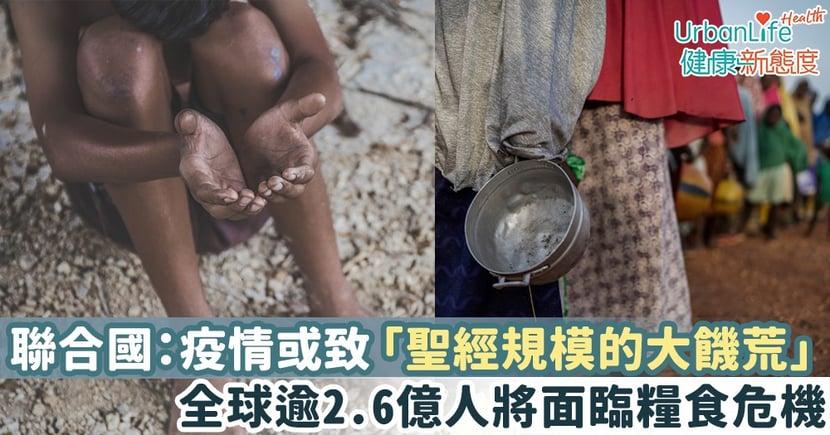 【新型肺炎疫情】聯合國警告:疫情或致「聖經規模的大饑荒」 全球逾2.6億人將面臨糧食危機