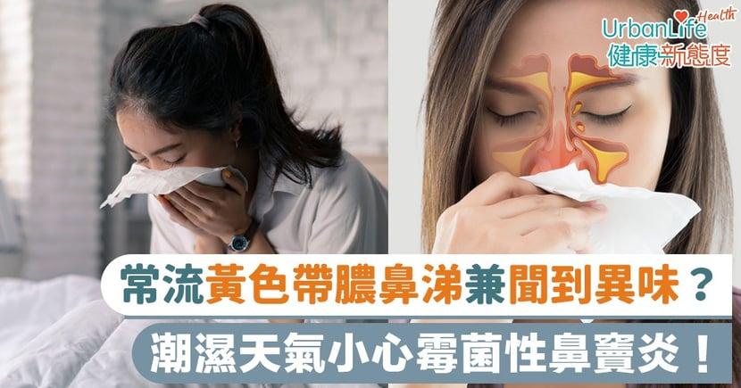 【鼻竇炎症狀】常流黃色帶膿鼻涕兼聞到異味?潮濕天氣小心霉菌性鼻竇炎!