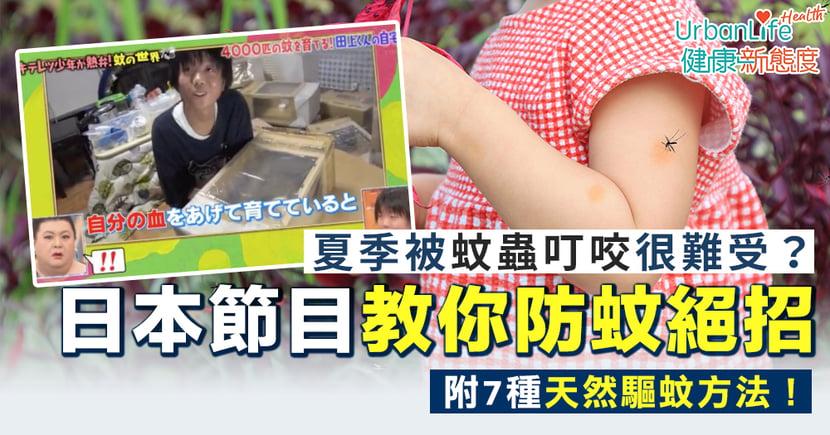 【驅蚊方法】夏季被蚊蟲叮咬很難受?日本節目教防蚊絕招+另外7種天然驅蚊方法