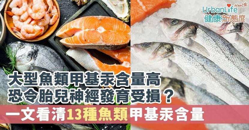 【甲基汞中毒】大型魚類甲基汞含量高恐令胎兒神經發育受損?一文看清13種魚類甲基汞含量