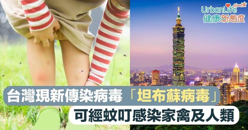 【新傳染病】台灣現新傳染病毒「坦布蘇病毒」 可經蚊叮感染家禽及人類