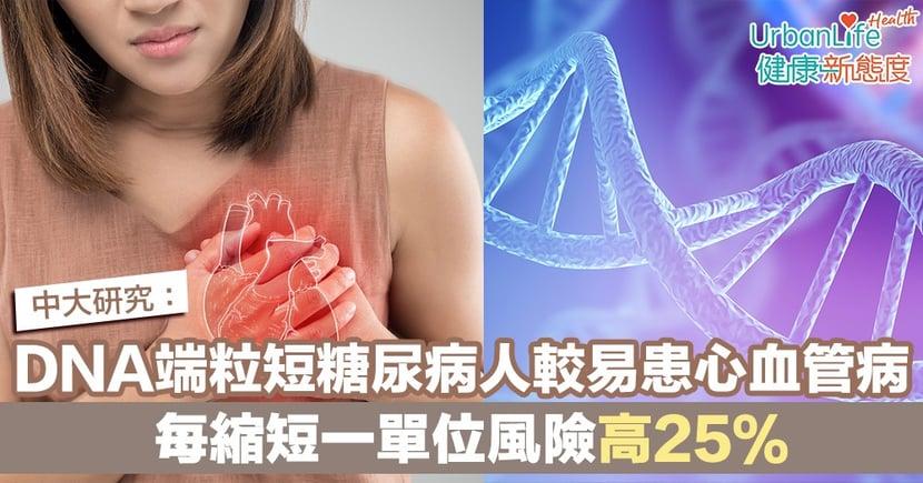 【糖尿病】中大研究:DNA端粒短糖尿病人較易患心血管病 每縮短一單位風險高25%