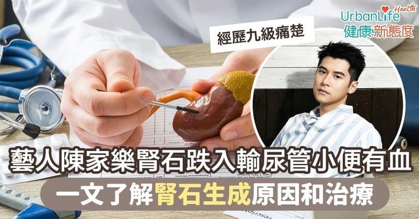 【腎石症狀】藝人陳家樂腎石跌入輸尿管小便有血 一文了解腎石生成原因和治療