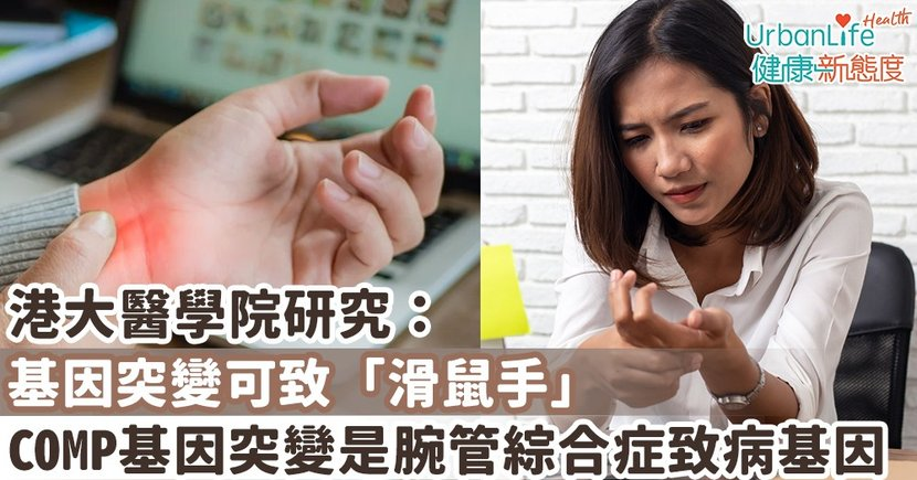 【腕管綜合症成因】港大醫學院研究:基因突變可致「滑鼠手」 COMP基因突變是腕管綜合症主要風險因素之一