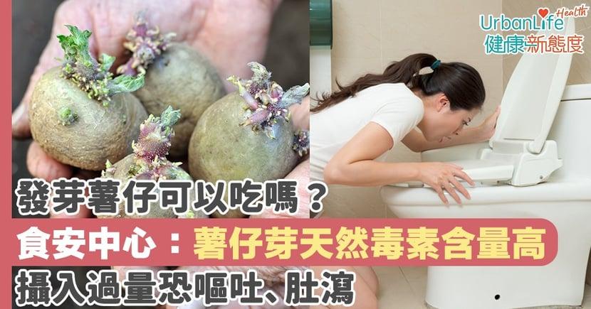 【薯仔發芽】發芽薯仔可以吃嗎?食安中心:薯仔芽天然毒素含量高 攝入過量恐嘔吐肚瀉