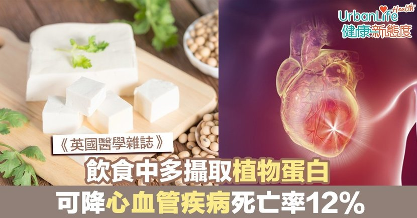 【蛋白質好處】《英國醫學雜誌》:飲食中多攝取植物蛋白 可降心血管疾病死亡率12%