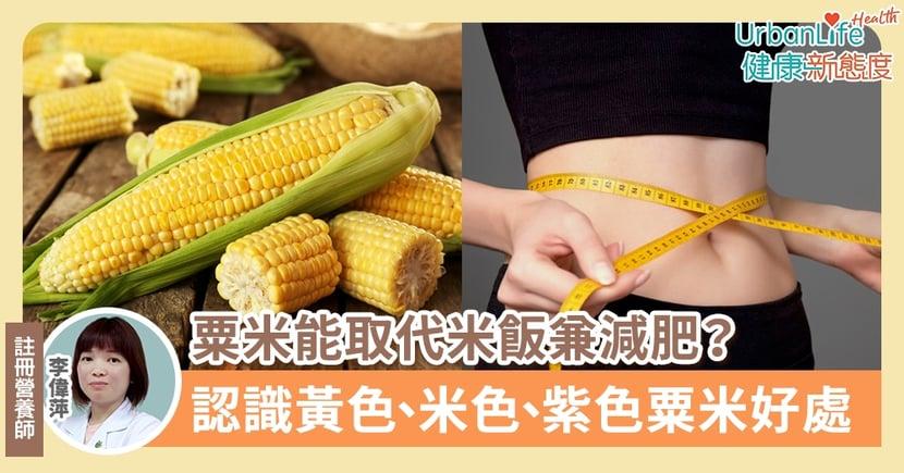 【粟米營養】粟米能取代米飯兼減肥?認識黃色、米色、紫色粟米好處