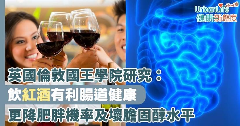 【紅酒好處】英國倫敦國王學院研究:飲紅酒增腸道菌群多樣性有利腸道健康 更降肥胖機率及壞膽固醇水平