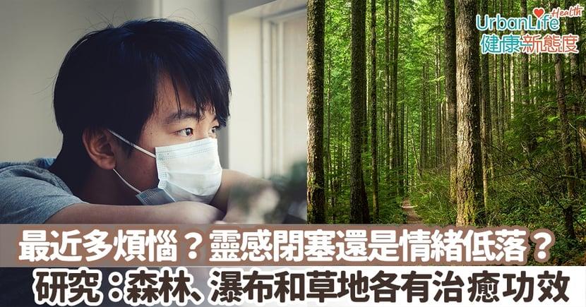 【情緒健康】最近多煩惱?靈感閉塞還是情緒低落?倫敦大學:森林、瀑布和草地各有不同治癒功效