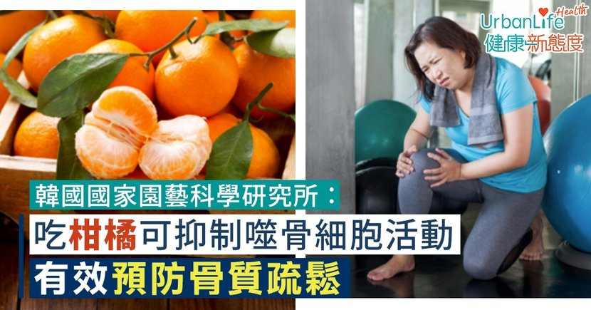 【骨質疏鬆預防】韓國國家園藝科學研究所:吃柑橘可抑制噬骨細胞活動 有效預防骨質疏鬆