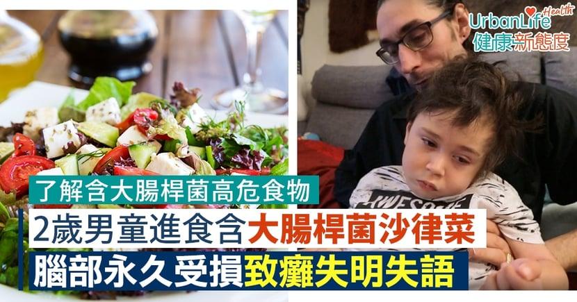 【沙律大腸桿菌】2歲男童進食含大腸桿菌沙律菜 腦部永久受損致癱失明失語