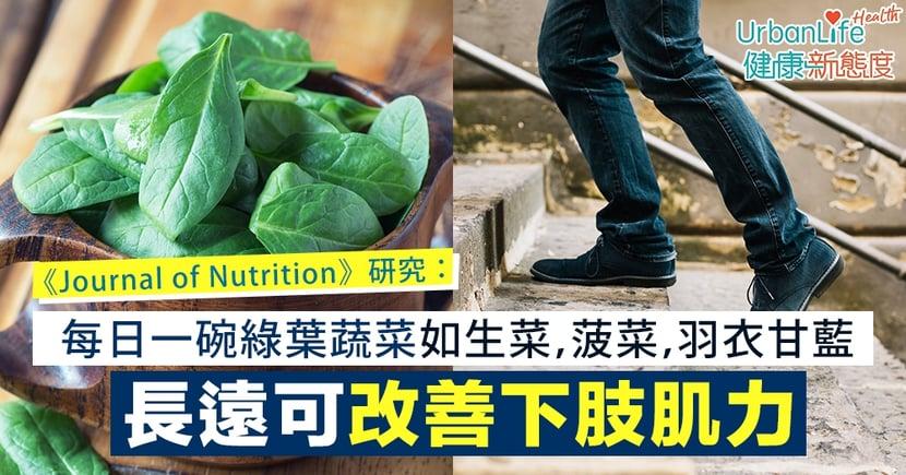 【肌力改善】《Journal of Nutrition》研究:每日一碗綠葉蔬菜 長遠可改善下肢肌力