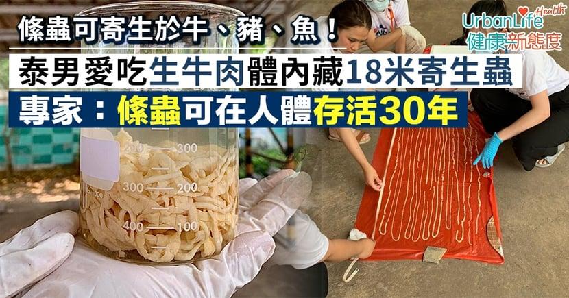 【寄生蟲症狀】泰男愛吃生牛肉體內藏18米寄生蟲 專家:絛蟲可在人體存活30年(附感染症狀)