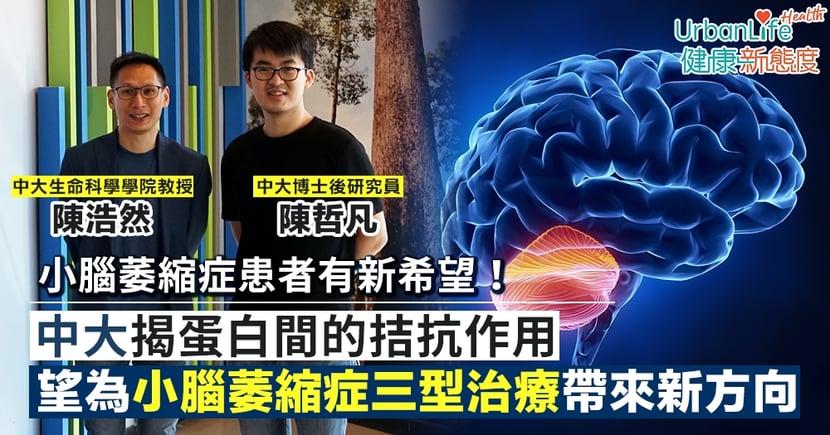 【罕見病治療】中大揭蛋白間的拮抗作用 有望為小腦萎縮症三型治療帶來新方向
