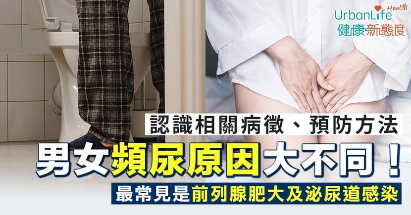 【頻尿原因】男女頻尿原因大不同!最常見是前列腺肥大及泌尿道感染
