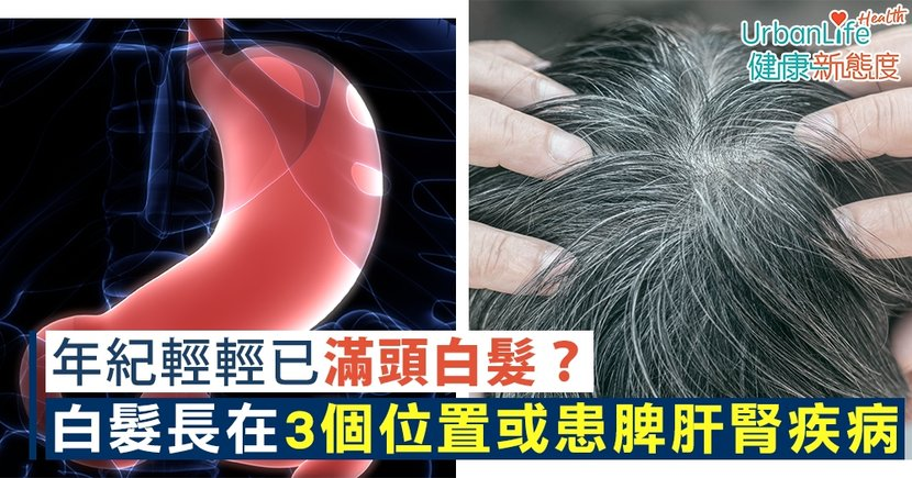 【白髮位置】年紀輕輕已滿頭白髮?白頭髮長在這3個位置或患脾、肝、腎疾病