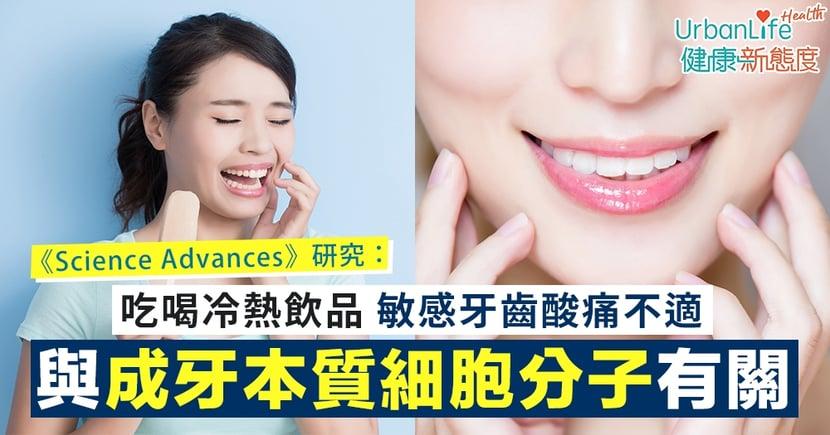 【牙齒酸痛】敏感牙齒凍到牙痠?《Science Advances》研究:與成牙本質細胞分子TRPC5有關