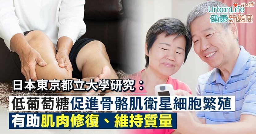 【血糖指數】日本東京都立大學研究:低葡萄糖環境促進骨骼肌衛星細胞繁殖 有助肌肉修復、維持質量