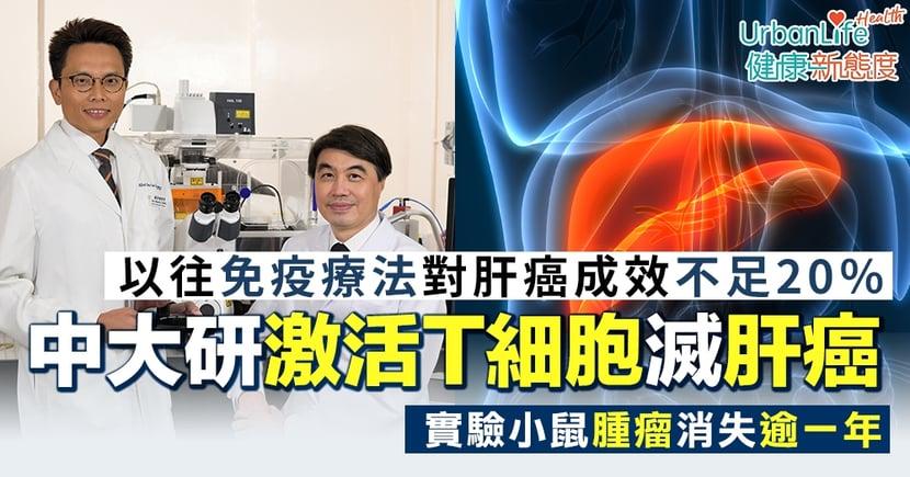 【肝癌治療】中大研激活免疫細胞滅肝癌 實驗小鼠腫瘤消失逾一年
