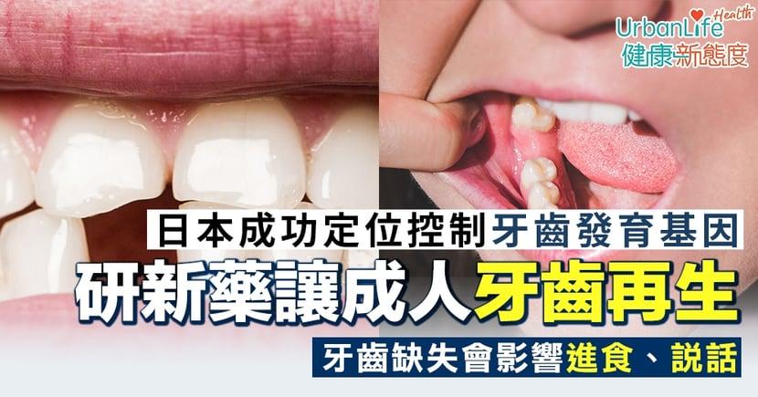 【先天牙齒缺失】日本成功定位控制牙齒發育基因 研新藥讓成人牙齒再生