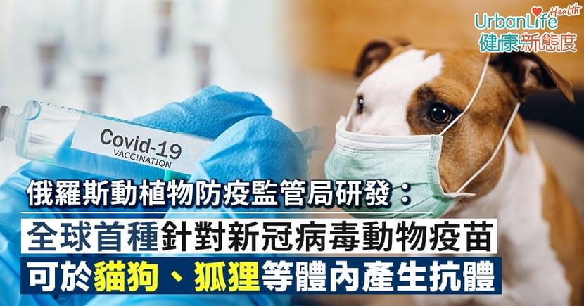 【動物疫苗】俄羅斯研發全球首種新冠病毒的動物疫苗 可於貓狗、狐狸等體內產生抗體