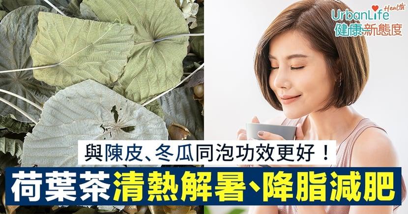 【荷葉茶功效】清熱解暑、降脂減肥 與陳皮、冬瓜同泡功效更好