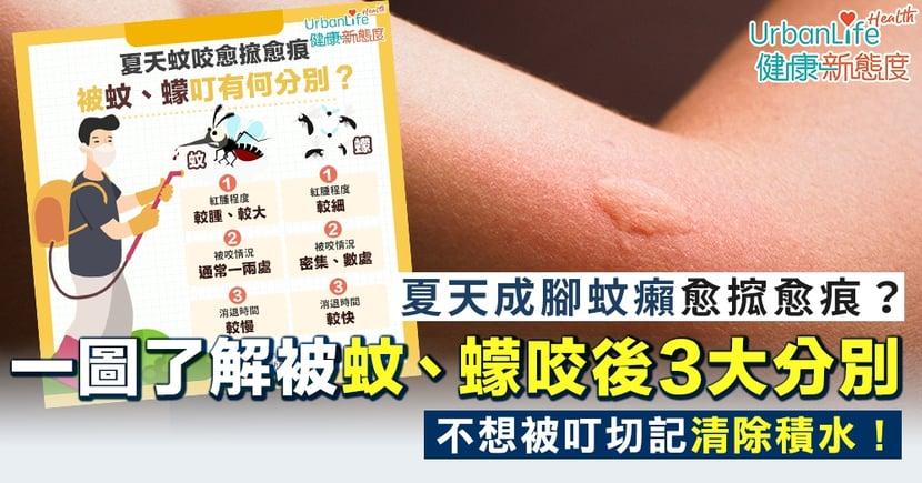 【蚊蠓分別】夏天成腳蚊癩愈搲愈痕?一圖了解被蚊、蠓咬後3大分別