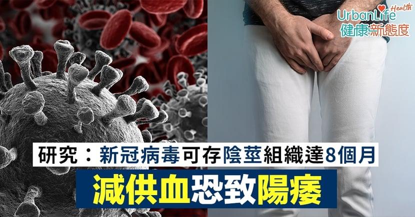 【新冠肺炎後遺症】美國研究:新冠病毒可存陰莖組織達8個月 減供血恐致陽痿
