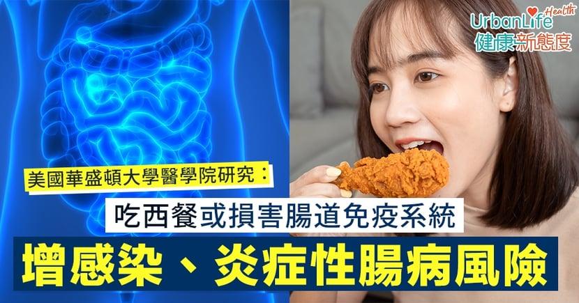 【腸道發炎】美國華盛頓大學醫學院研究:吃西餐或損害腸道免疫系統 增感染、炎症性腸病風險
