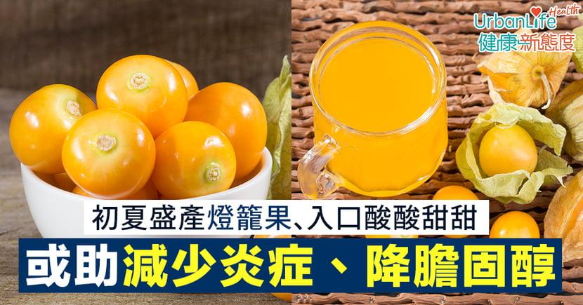 【燈籠果功效】初夏盛產燈籠果、入口酸酸甜甜 或有助減少炎症、降膽固醇
