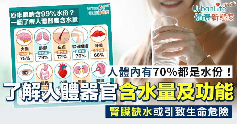 【器官含水量】腎臟缺水或引致生命危險!一圖了解人體器官含水量及功能