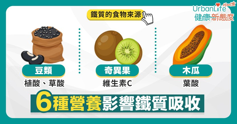 【鐵質補充】容易經痛、經常手腳冰冷?從日常生活認識6種影響鐵質吸收的營養