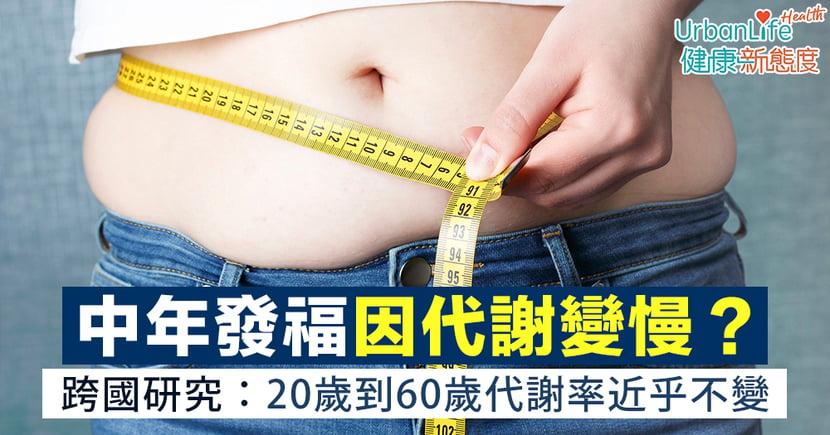 【中年發福】肥胖因代謝變慢?跨國研究:20歲到60歲新陳代謝近乎不變